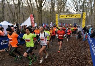 belgrad koşu
